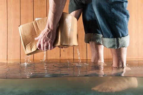 6 Steps to a Sump Pump Check-Up